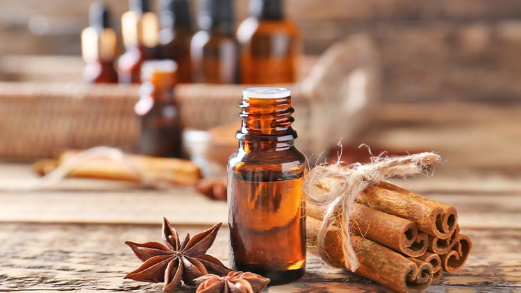 Beautiful composition with essential cinnamon oil in glass bottle