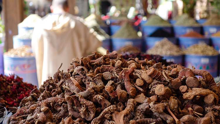 Pile of dried ginseng roots in a traditional spice shop on the bazaar in Marrakesh, Morocco