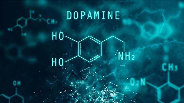 dopamine chemical formula
