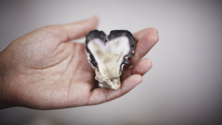 Heart shaped oyster in man's hand